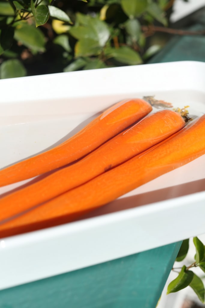 Reviving Carrots