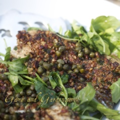 HERB PECAN CRUSTED TROUT