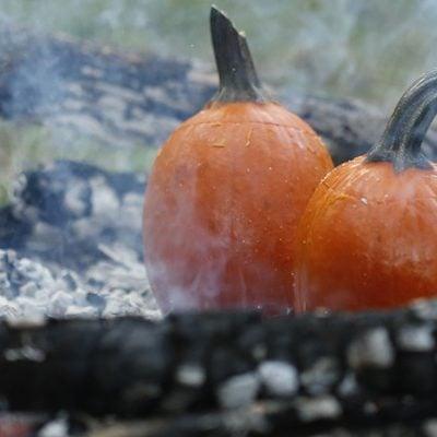 """Pumpkin Pie """"Pioneer Style"""" – No Oven Needed"""