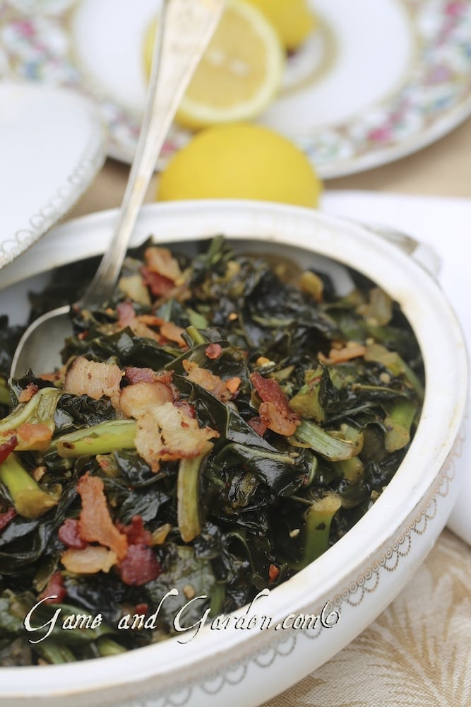 Collard greens are among my favorite winter vegetable and they are incredibly easy to prepare. You can cook every part of this vegetable from the leaf to the root.