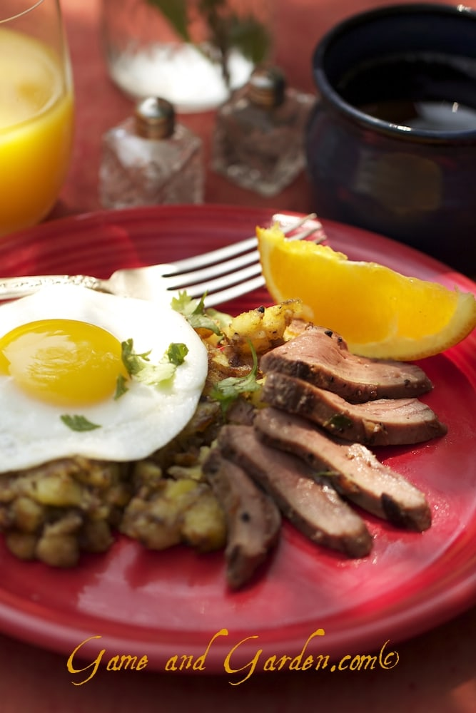 This is last year's Christmas Breakfast: Duck, Hasbrowns, and a Fresh Egg straight from the coop and with orange juice and the best coffee in the world!
