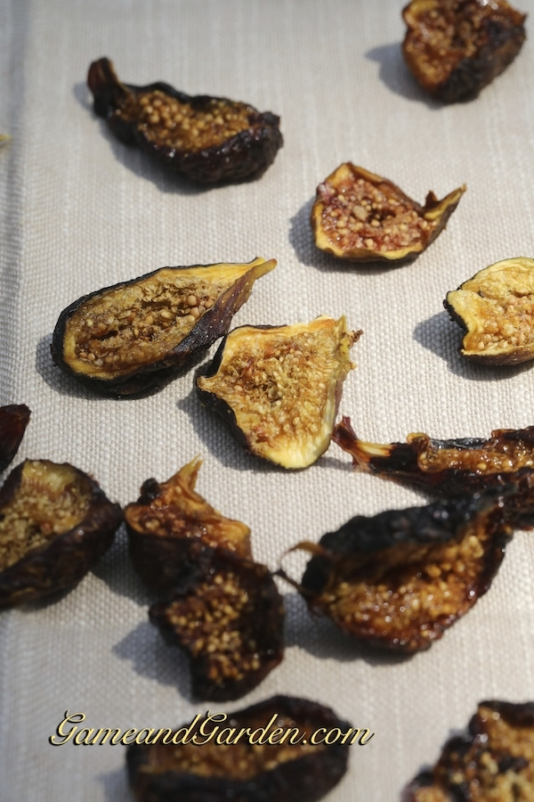 Drying fruit is the perfect way to preserve flavor and to keep healthy snacks on hand.