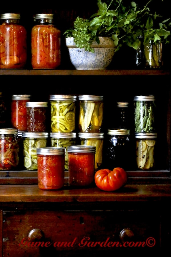Preserving Summer: Everything You Need to Know About Canning, Drying, and Freezing