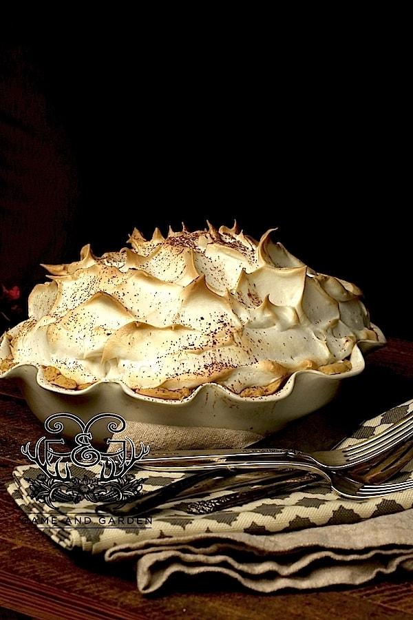 Chocolate Meringue Pie - Fail Proof - Stacy Lyn Harris