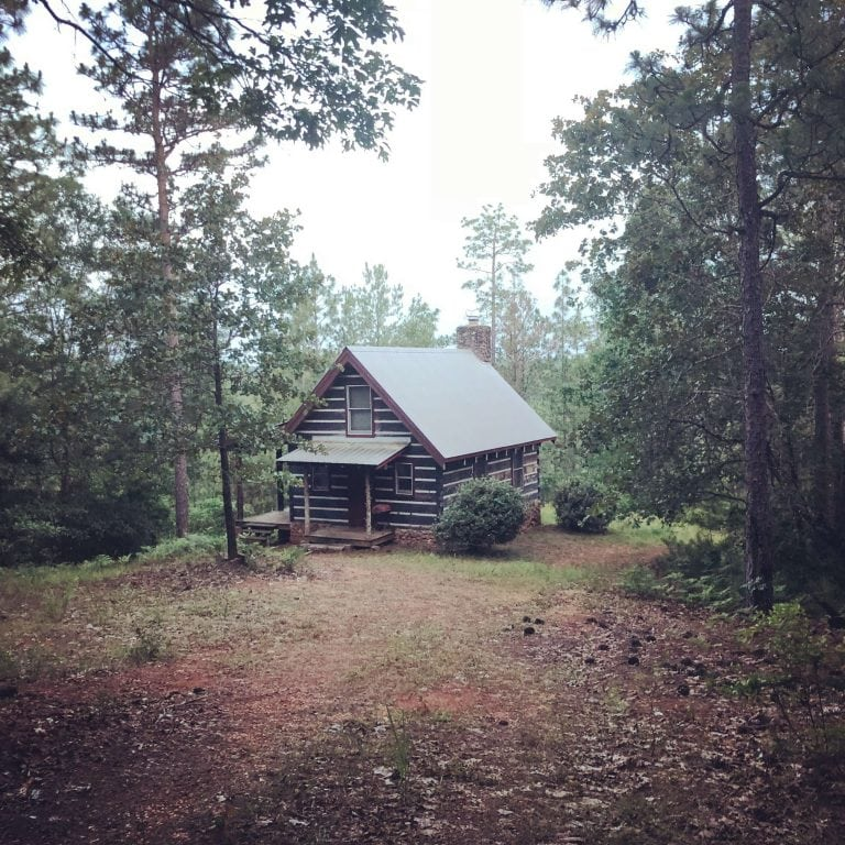 A Family Builds a Log Cabin