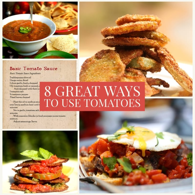 montage of tomato recipes in 8 great ways to use tomatoes