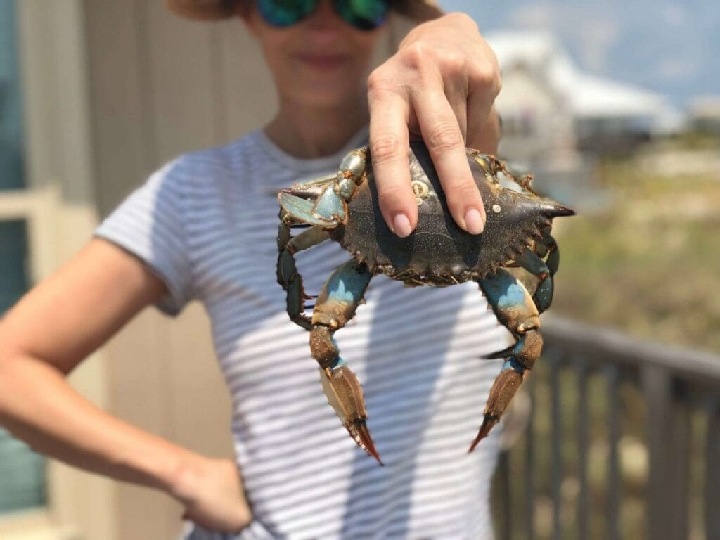 Labor Day on the beach - crab jubilee!