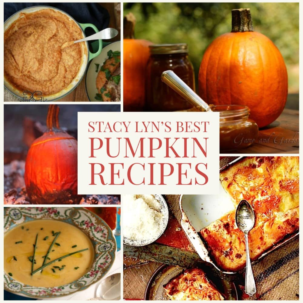 colorful montage of Stacy Lyn's best recipes for pumpkin, including pumpkin butter and pioneer pumpkin pie